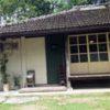 鬱蒼と茂るジャングルの中に琉球古民家のcafeハコニワ