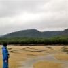 自然の宝庫☆2泊3日の石垣島と西表島(いりおもてじま)の旅行記