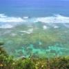 ウミガメビューポイント 沖永良部島
